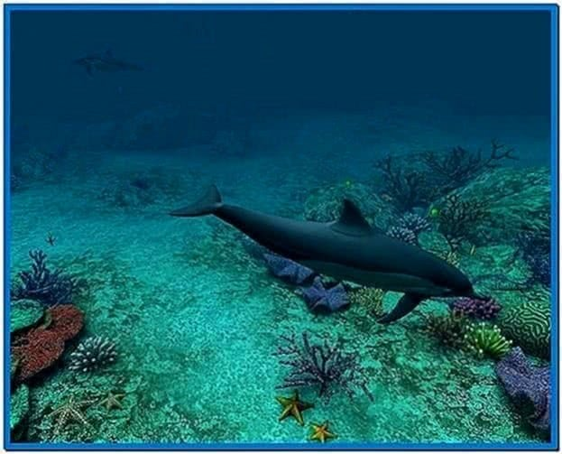 Dolphins 3D Screensaver and Animated Wallpaper 1.0