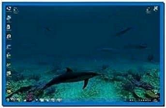 Dolphins 3D Screensaver