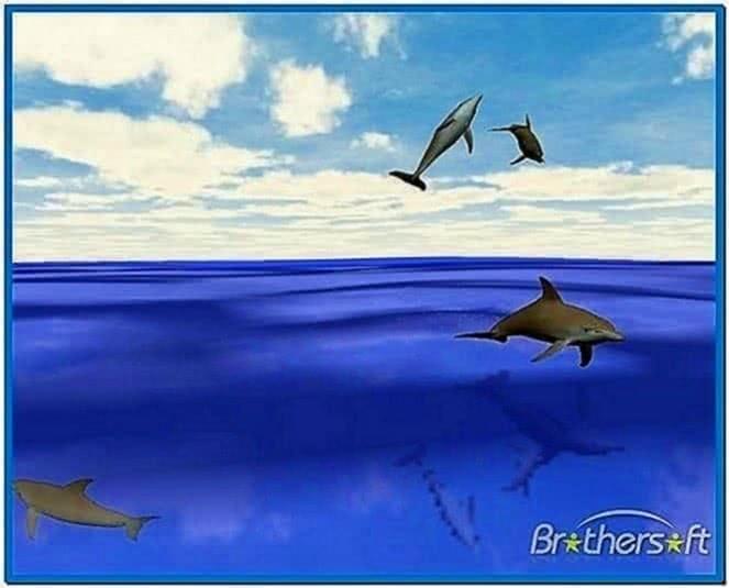 Dolphins Screensaver Mac