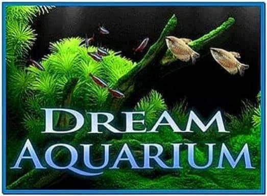 Dream aquarium screensaver full espanol download free - Dream aquarium virtual fishtank 1 ...