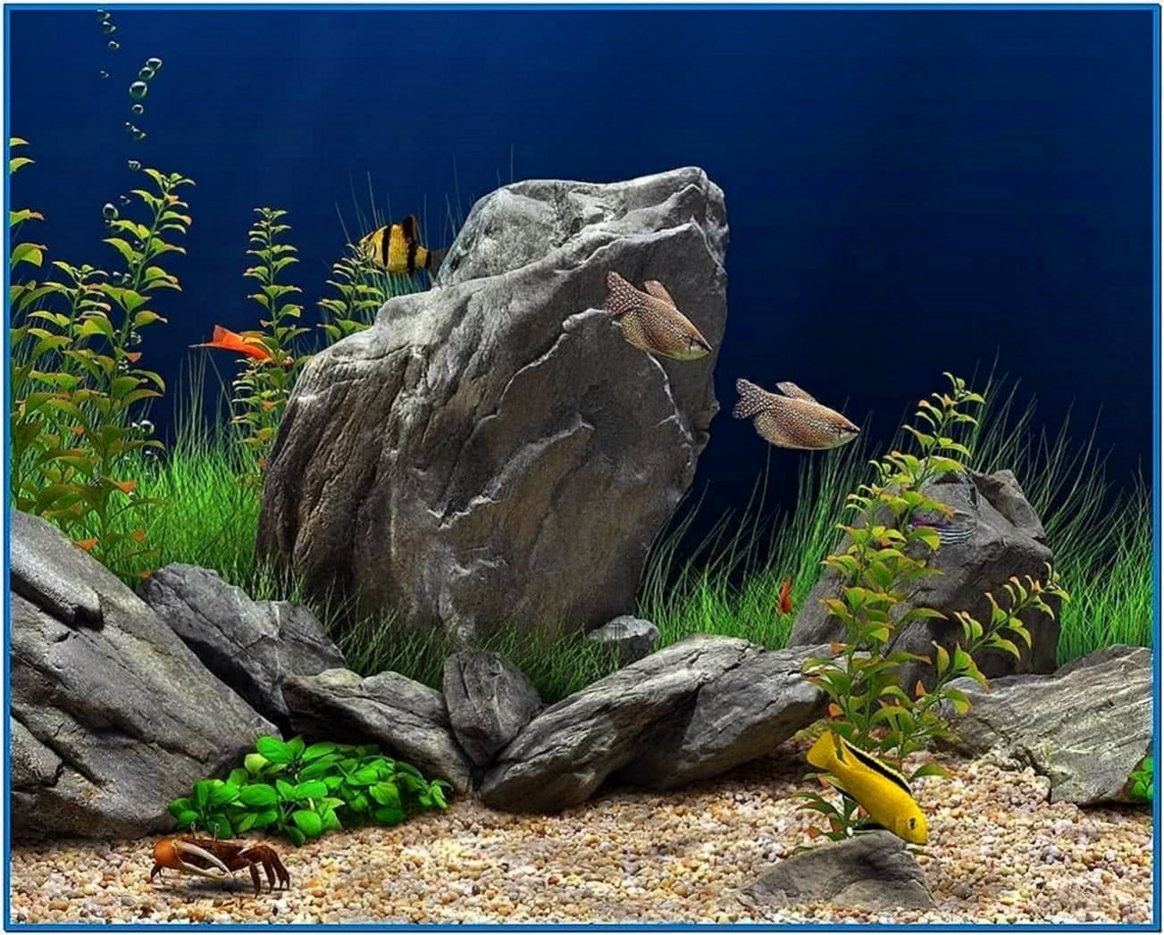 Dream Aquarium 3D Screensaver 1.0