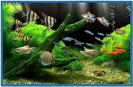 Dream Aquarium Screensaver 1.104