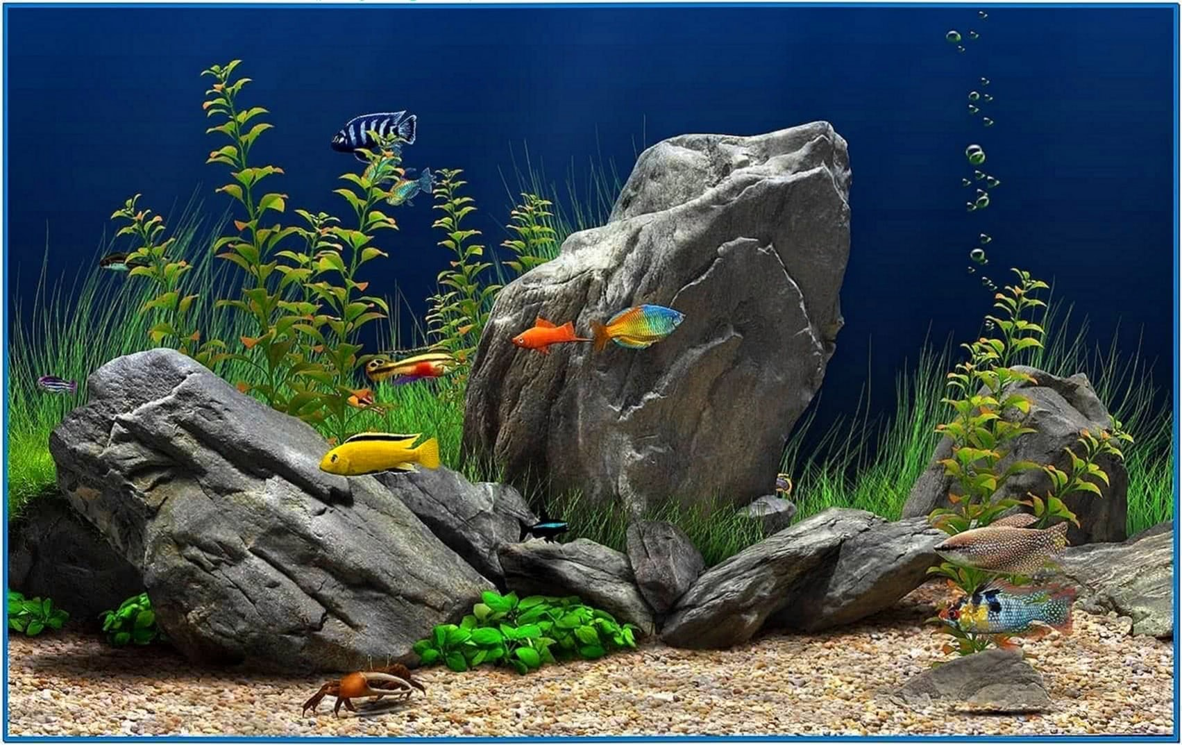 Dream Aquarium Screensaver 1.1090