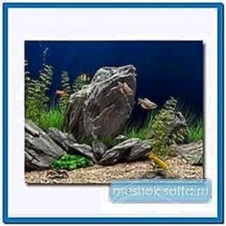 Dream aquarium screensaver 1.1770