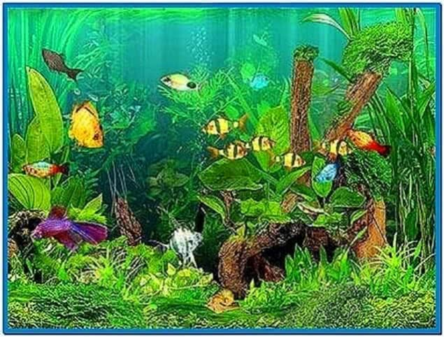 Dream Aquarium Screensaver 1.1770