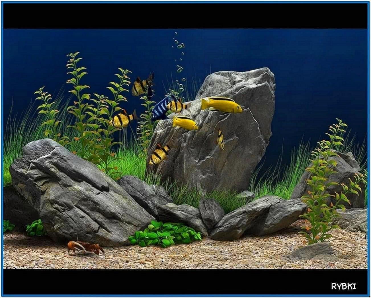 Dream Aquarium Screensaver 1.214