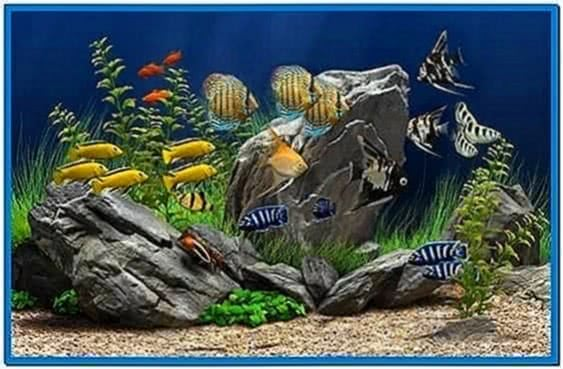 Dream Aquarium Screensaver 1.2591