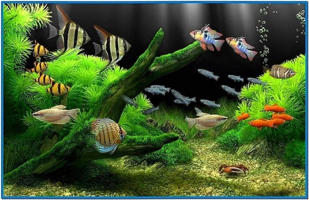 аквариум анимированные обои на рабочий стол скачать бесплатно
