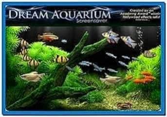 Dream Aquarium Screensaver Full 1.234