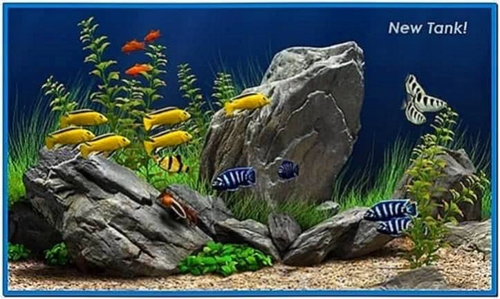 Dream Aquarium Screensaver Mac OS X