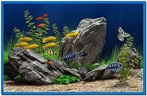 Dream Aquarium XP Screensaver 1.1090