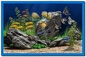 Dream aquarium xp vista screensaver