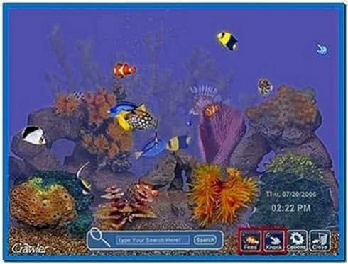 Feed Fish Screensaver