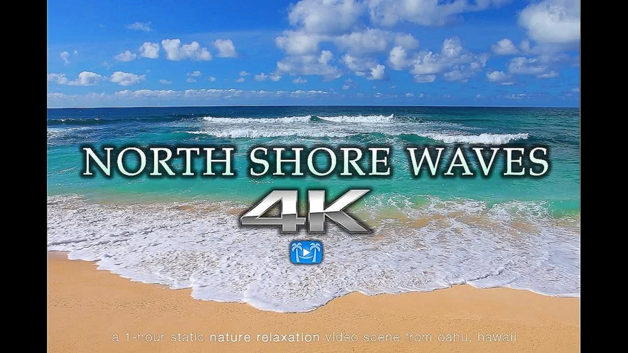 4K NORTH SHORE WAVES Oahu Endless Video Screensaver