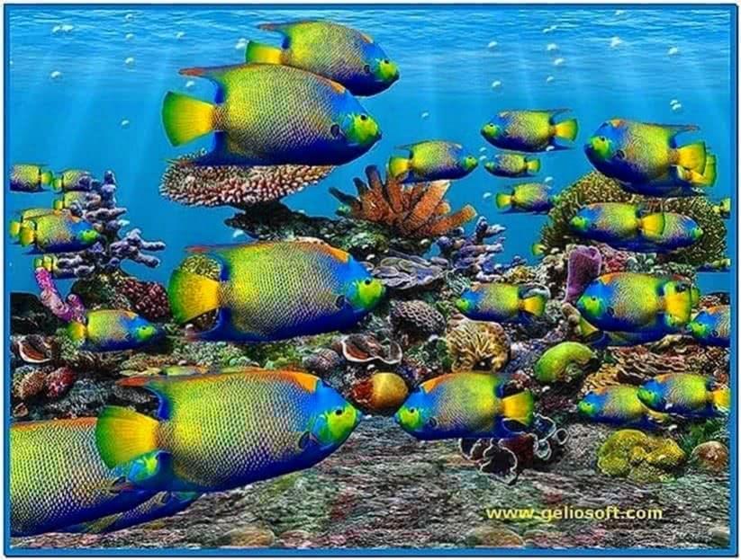 Fish Aquarium 3D Screensaver Full Version