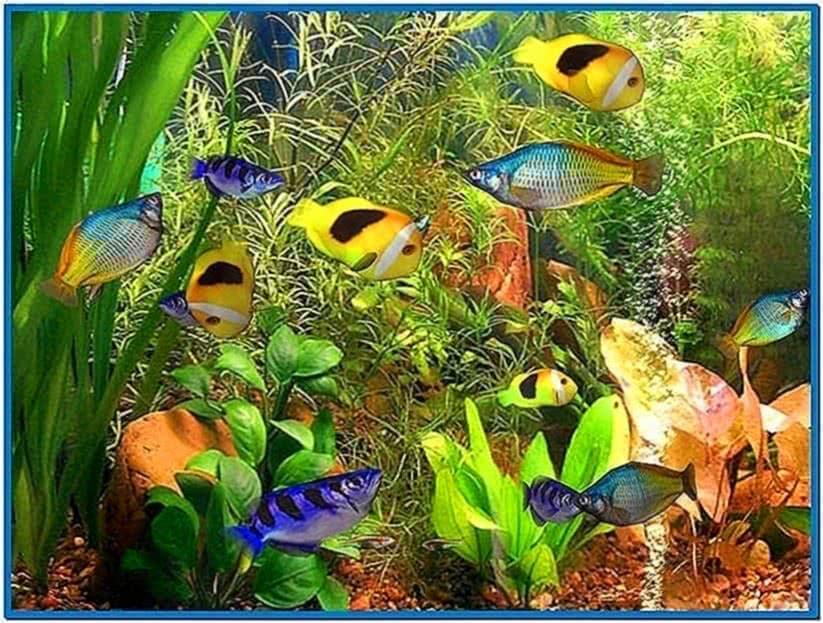 Fish aquarium 3D screensaver Mac