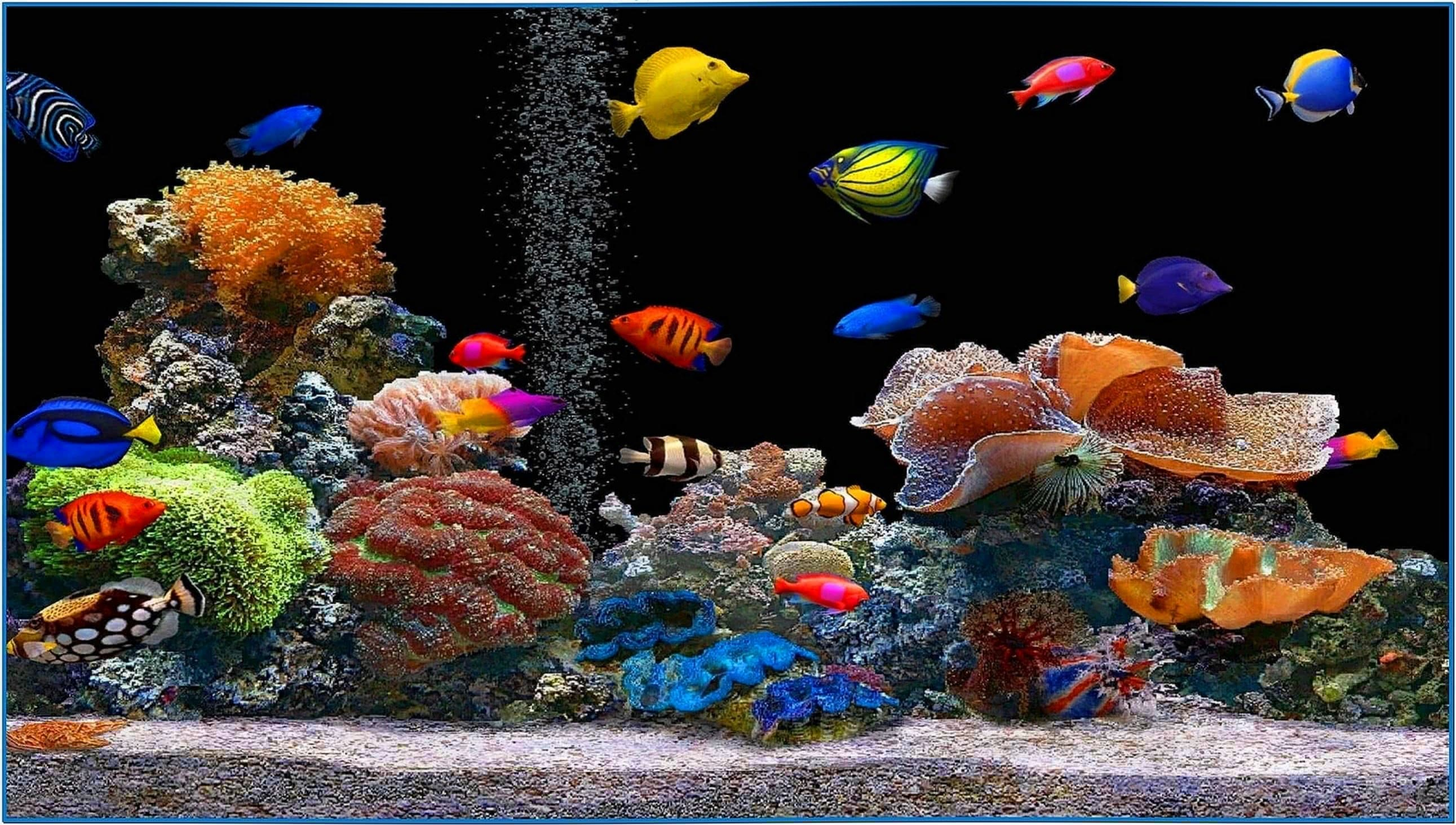 tropical fish 3d screensaver 1 2 serial number 2017 fish