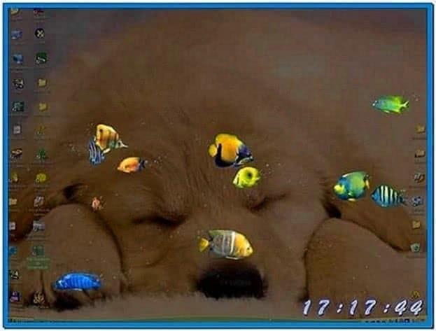 Fish Aquarium Screensaver Windows XP