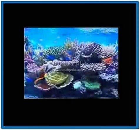 Fish Aquarium Video Screensaver