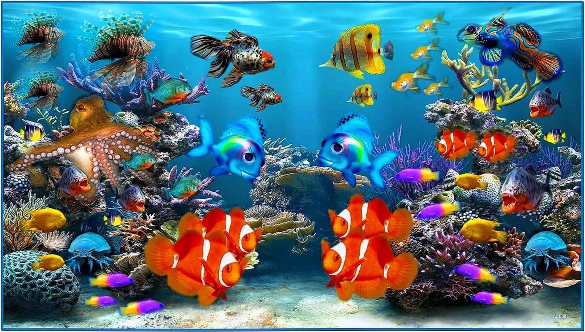 Fish Aquarium Video Screensaver Software