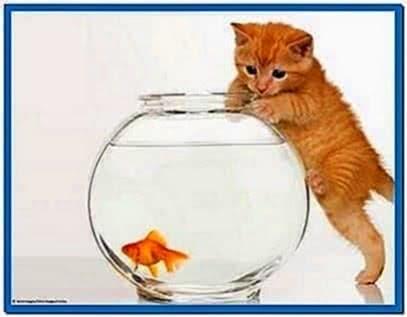 Fish Bowl Frenzy Screensaver