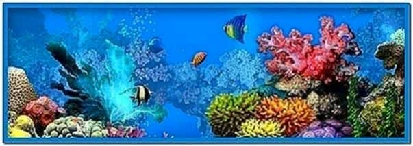 Fish Tank Screensaver for PC