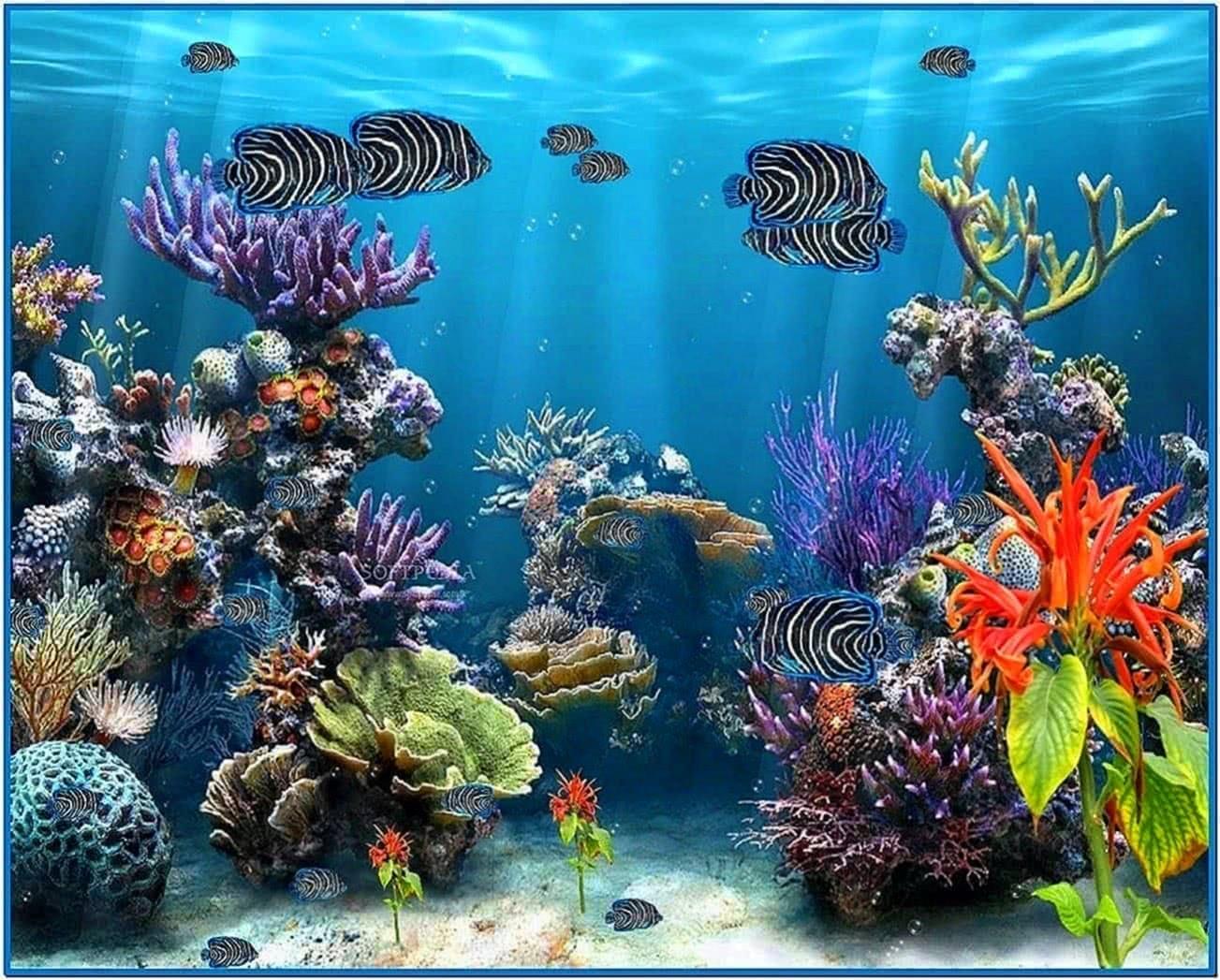Fish tank screensaver full version