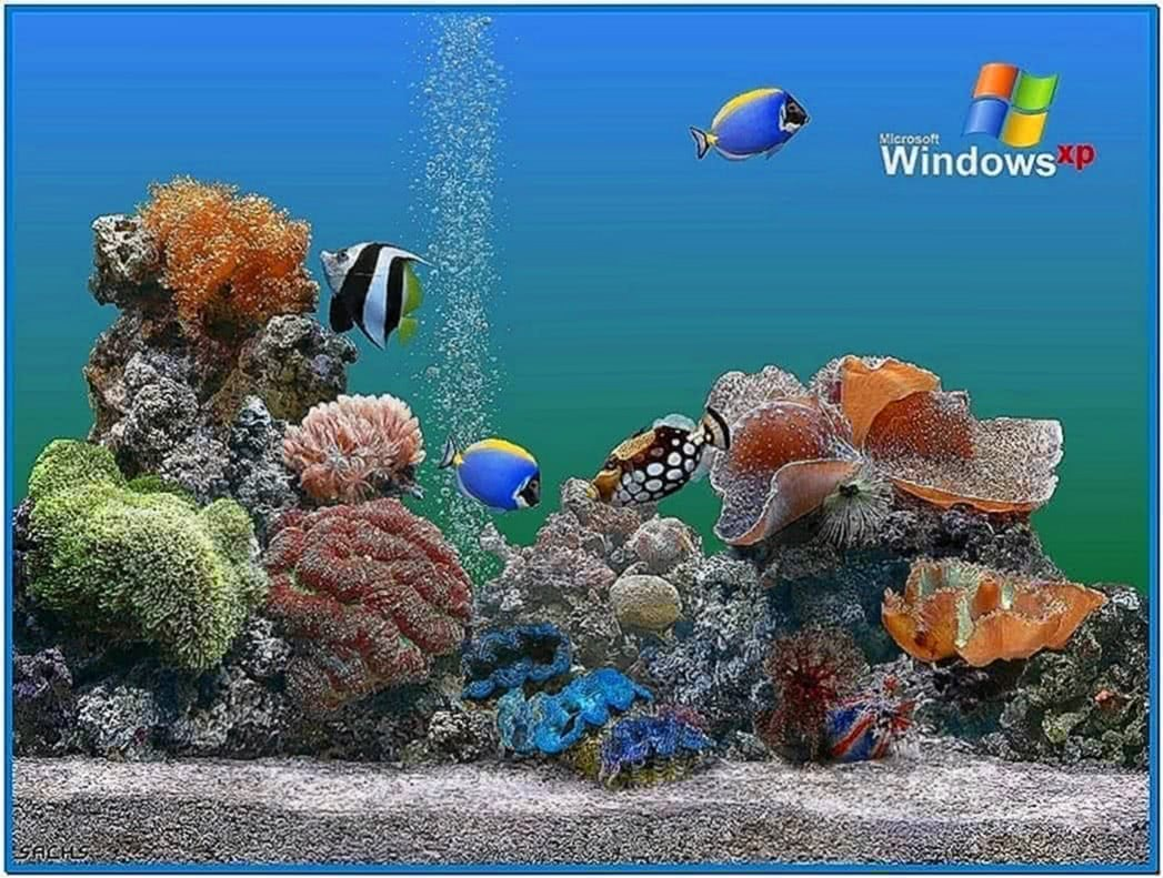 Fish tank screensaver Windows xp