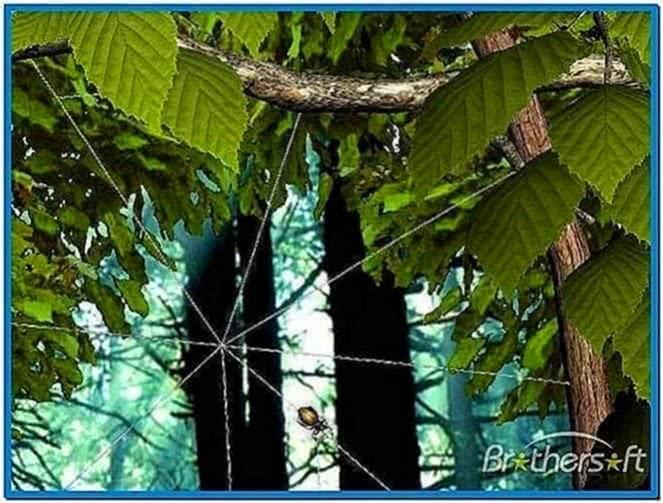 Forest Life 3D Screensaver