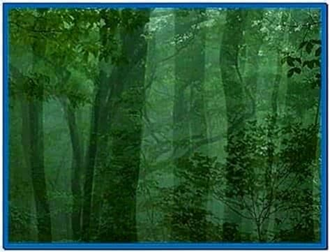 Forest Screensaver Mac