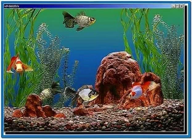 Golden Fish Aquarium Screensaver