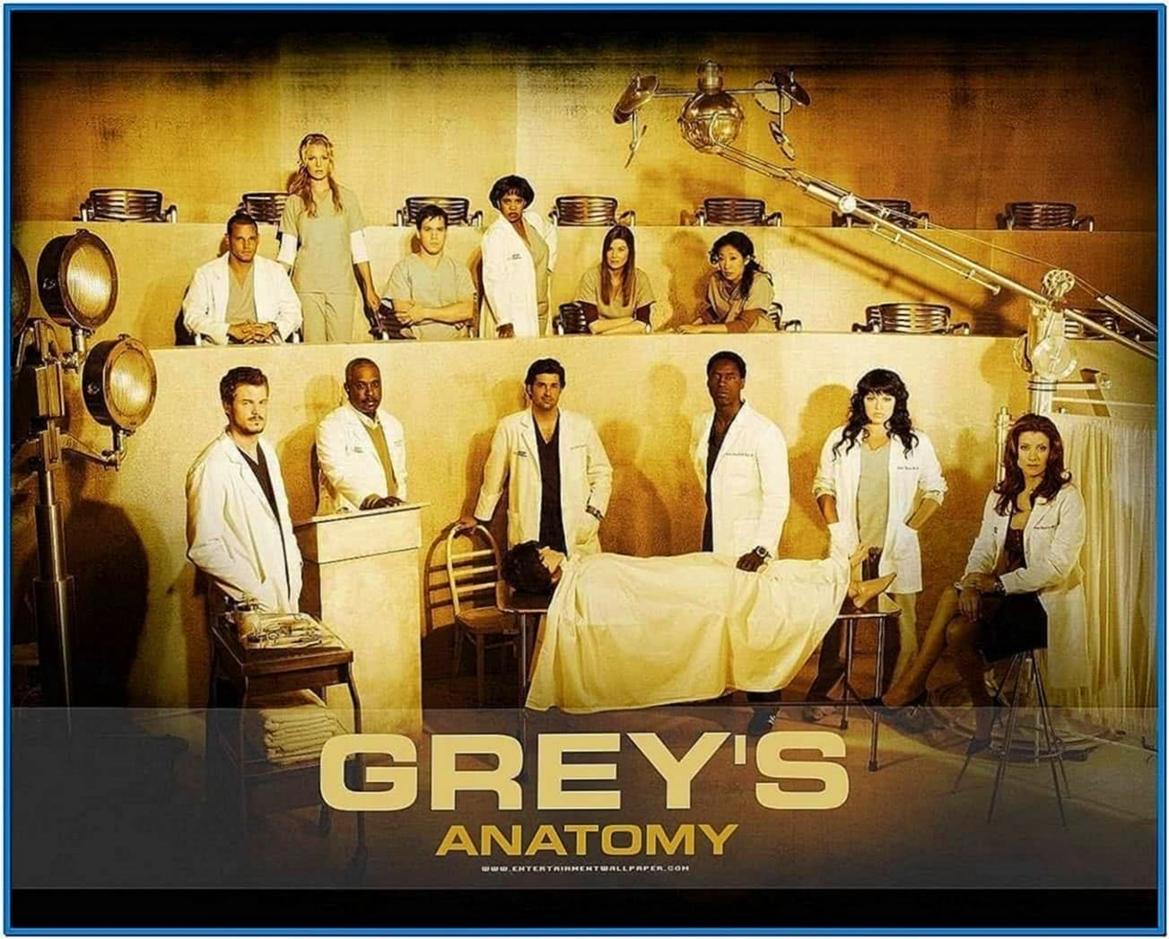 Greys Anatomy Screensaver Download Free