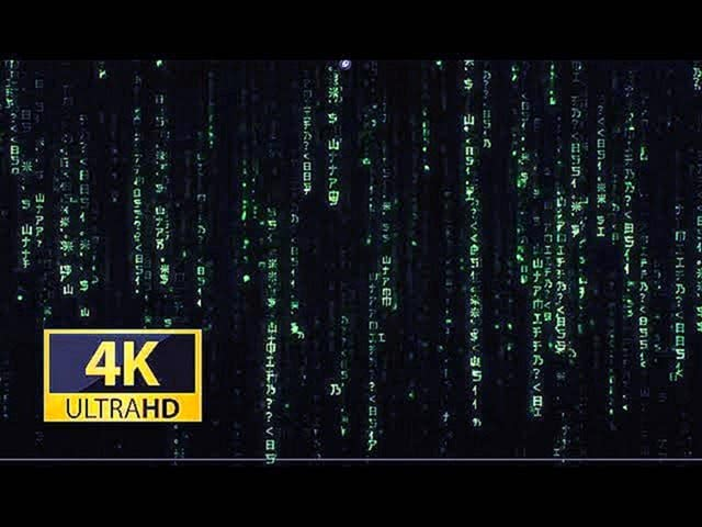 Matrix screensaver Rain code 4K video