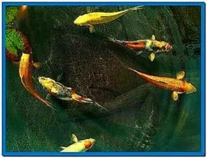 Koi Fish 3D Screensaver 2.0.0.6 Software