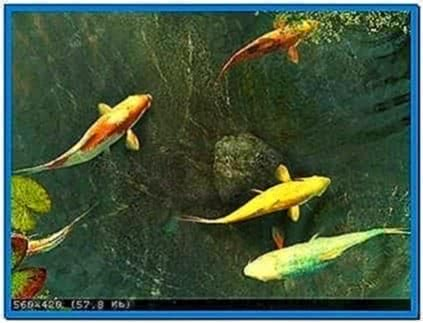 Koi Fish 3D Screensaver and Animated Wallpaper 2.0