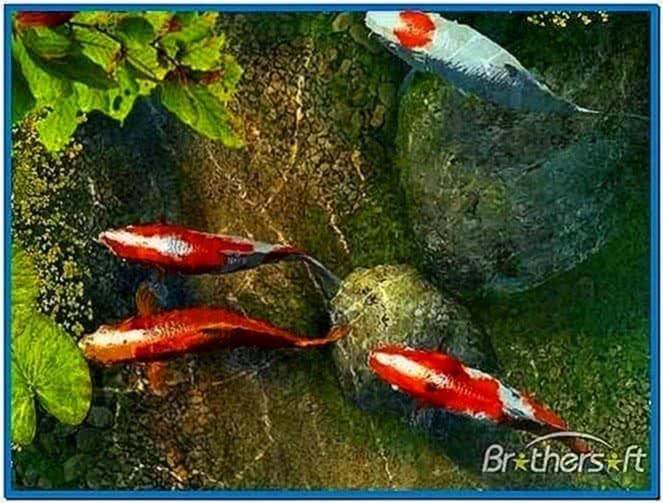 Koi Fish 3D Screensaver and Animated Wallpaper