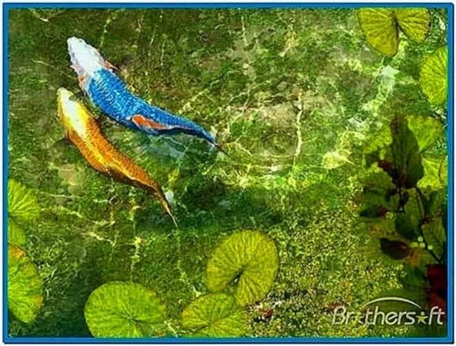 Koi fish pond 3d screensaver 1 0 download free for Koi pond screensaver