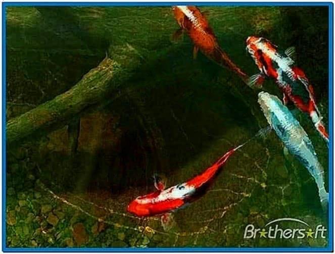 Koi Fish Pond 3D Screensaver 1.0