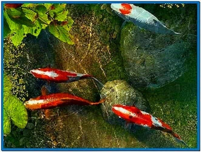 Koi Fish Pond 3d Screensaver 1 0 Download Free