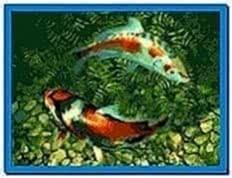 Koi Fish Screensaver Code
