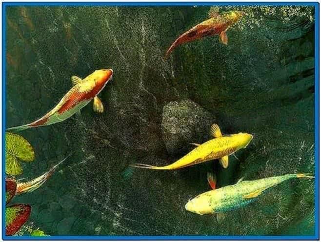 Koi Fish Screensaver Mac