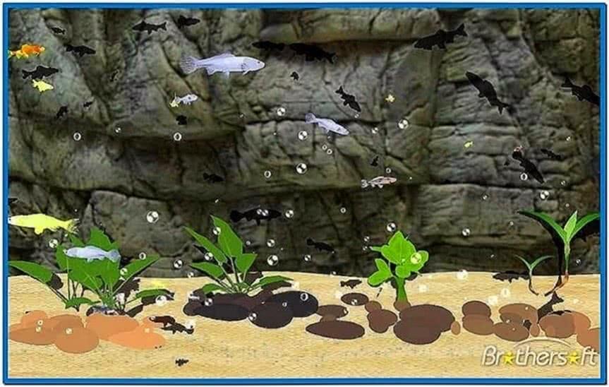 Koi Fish Screensaver Windows 7