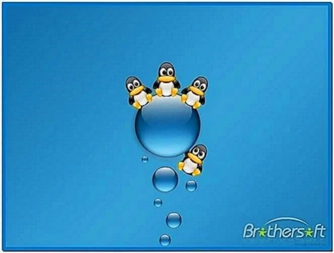 Linux photo slideshow screensaver