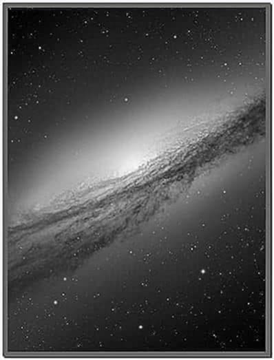 Lion Galaxy Screensaver Mac