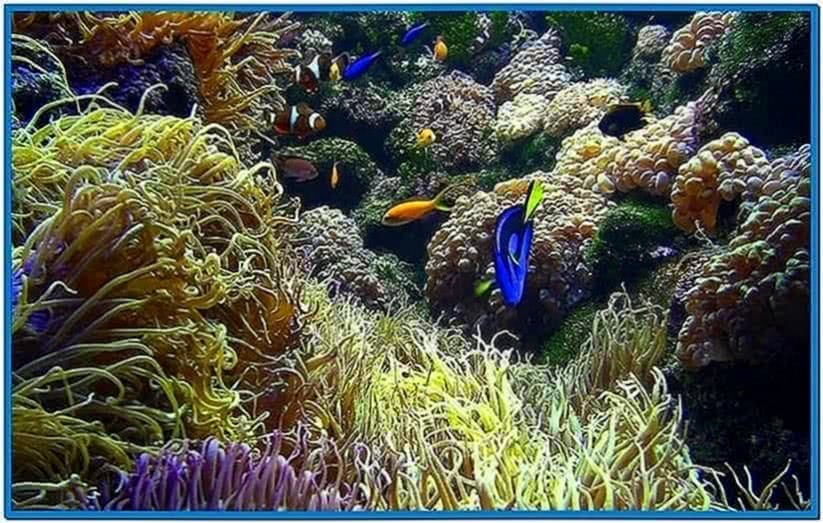 Live aquarium screensaver mac download free for Fish tank screen