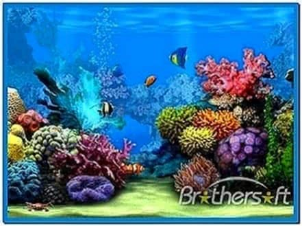 Live Aquarium Screensavers