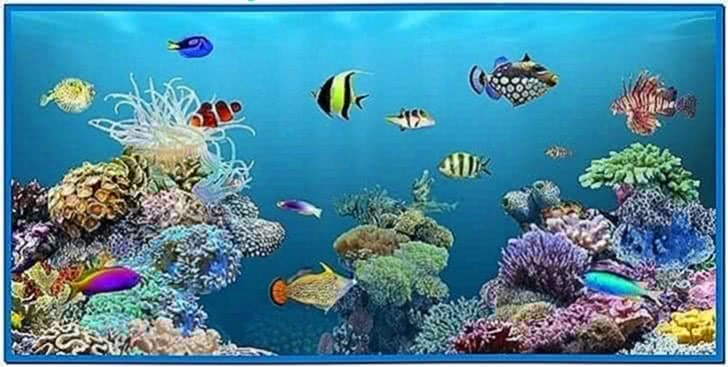 Live Fish Tank Screensaver