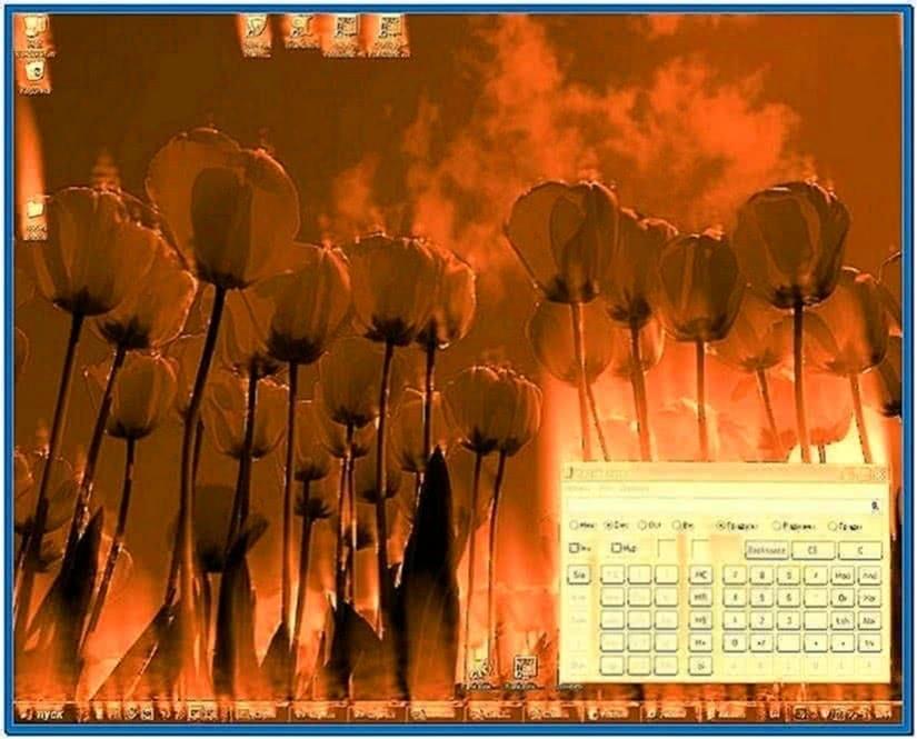 Living flame fire screensaver