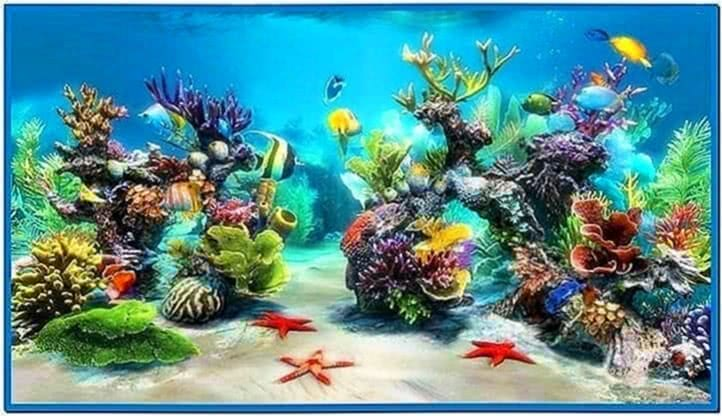 Living Marine Aquarium Screensaver Windows 7 Download
