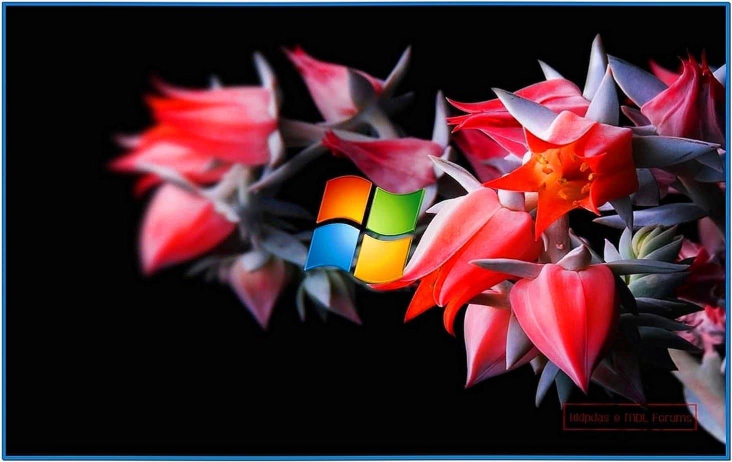 Mac Screensaver Windows 8